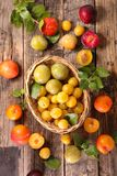 Assorted colorful plum Stock Image