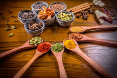 Assorted colorful spices Stock Photos
