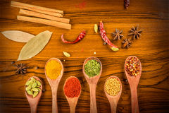Assorted colorful spices Royalty Free Stock Image