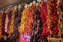 Assorted colorful varieties of hot and sweet dry peppers in the market. Rows of variety chili peppers hang together in stock images