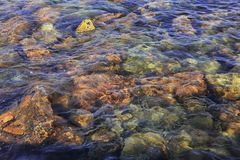 Assorted coloured Rocks under the Ocean, at low tide, with Blue Highlights. Sky reflected on gentle waves, over coloured rocks. Assorted coloured Rocks under royalty free stock photo