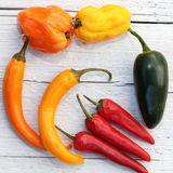Assorted colourful peppers Royalty Free Stock Photography