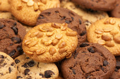 Assorted cookies Stock Image