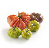 Assorted cultivars of fresh tomato Stock Images