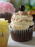 Assorted cupcakes Stock Photos