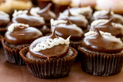 Assorted Cupcakes on Display. Chocolate cream filled cupcakes sitting on display table Royalty Free Stock Photo