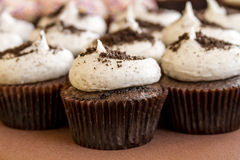 Assorted Cupcakes on Display. Cookies and cream chocolate cupcakes sitting on display table Royalty Free Stock Image
