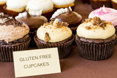 Assorted Cupcakes on Display. Display of assorted gluten free cupcakes sitting on display table Stock Photography