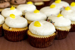 Assorted Cupcakes on Display. Lemon filled lemon cupcakes sitting on display table Stock Images