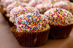 Assorted Cupcakes on Display. Yellow cake cupcakes with multi-colored sprinkles sitting on display table Royalty Free Stock Photos