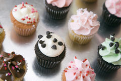 Assorted Cupcakes on Silver Surface Royalty Free Stock Image