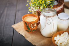 Assorted dairy products milk, yogurt, cottage cheese, sour cream. Rustic still life. Stock Photo