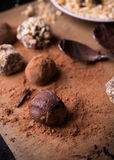 Assorted dark chocolate truffles Royalty Free Stock Image