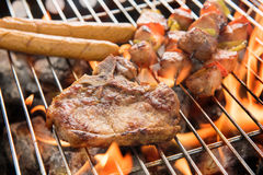 Assorted delicious grilled meat over the coals on a barbecue. Stock Image