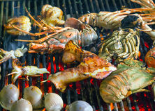 Assorted Delicious Grilled Seafood Barbecue Stock Image