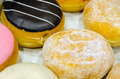 Assorted doughnuts Stock Images