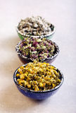 Assorted dried petals and herbs. Used for tea, perfumes, bath and cosmetics Stock Photos