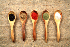 Assorted dried spices. Royalty Free Stock Photography