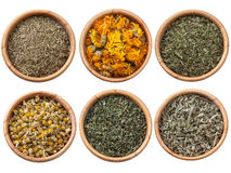 Assorted dry herbs and spices Royalty Free Stock Photo