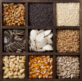 Assorted edible seeds arranged in a box Royalty Free Stock Photography