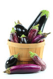 Assorted Eggplants in Bushel Basket on white. Royalty Free Stock Image