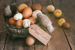 Assorted eggs in basket with note card Stock Images
