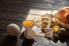 Assorted eggs rural composition. With window sunlight on wood background Stock Images
