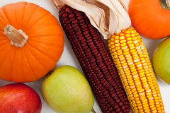 Assorted fall vegetables as a background Royalty Free Stock Image