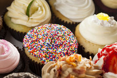 Assorted Fancy Gourmet Cupcakes with Frosting Stock Photos