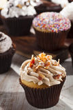 Assorted Fancy Gourmet Cupcakes with Frosting Royalty Free Stock Photo
