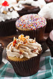 Assorted Fancy Gourmet Cupcakes with Frosting Stock Images