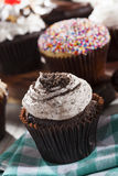 Assorted Fancy Gourmet Cupcakes with Frosting Royalty Free Stock Images