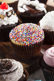 Assorted Fancy Gourmet Cupcakes with Frosting Royalty Free Stock Image