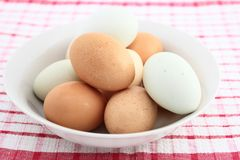 Assorted Farm Fresh Eggs In White Bowl Stock Images