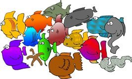 Assorted fish. This illustration depicts an assortment of fish and a starfish Royalty Free Stock Photography