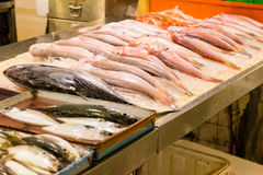 Assorted fish at fish market. Various fish at fish market royalty free stock image