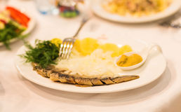Assorted fish on a plate Stock Photography