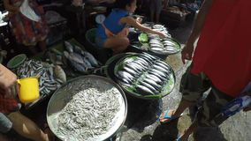 Assorted fish sold at the street flea market. Laguna, Philippines - September 9, 2015: Young woman sells various fish catch at street wet market due to lack of stock footage