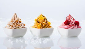 Assorted Flavor Frozen Yogurts on White Bowl royalty free stock images