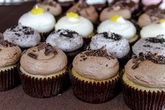 Assorted Flavors of Cupcake on Display. Rows of assorted cupcakes sitting on table with brown tablecloth Royalty Free Stock Photo
