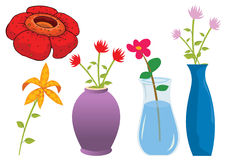 Assorted flower illustration in  Stock Photography