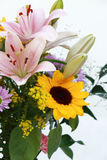 Assorted flowers Royalty Free Stock Photography