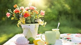 Assorted Flowers on Container Beside Mug on Table Stock Photos