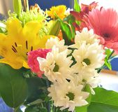 Assorted flowers Stock Photography