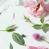 Assorted flowers heads. Royalty Free Stock Image