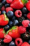 Assorted Fresh Berries Stock Photos