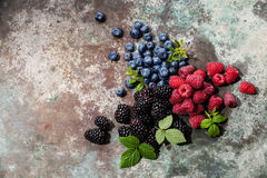 Assorted fresh berries with leaves Stock Images