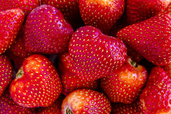 Assorted Fresh Berries and Pomegranate Seeds stock images
