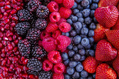 Assorted Fresh Berries and Pomegranate Seeds Stock Photography
