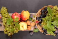 Assorted fresh fruits stock photography